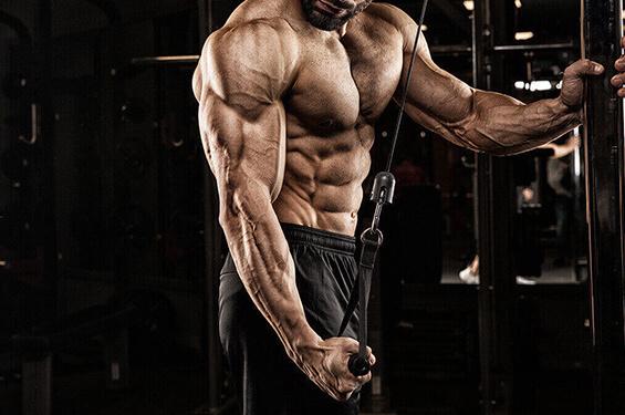 PRO-PT Muscle Paket